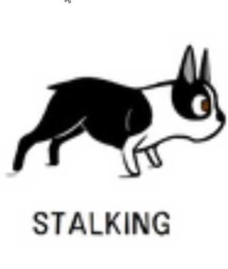 12stalking