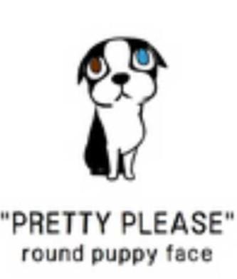 19roundpuppyface