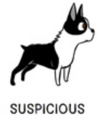 1suspicious