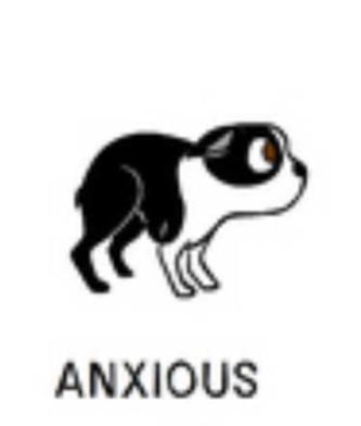 3anxious